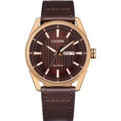 Đồng hồ nam Citizen Eco-Drive Brown Dial - AW0083-08X